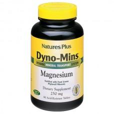 Dyno Mins Magnesium
