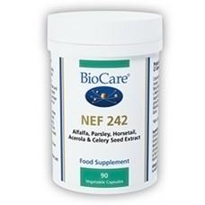 NEF 242